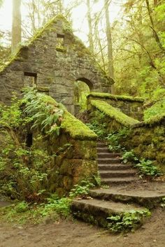 The Stone House Forest Park Portland Oregon.  This is an artist's rendition of Stone House but when the tree's are completely leafed out and the spring rains come and the weather warms up, the moss and fern's growing on the balusters look just like this.