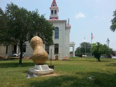 Jerry and the giant peanut in Floresville,  Texas.  Floresville is a city in Wilson County, Texas, United States. The population was 6,448 at the 2010 census. It is the county seat of Wilson County.[5] The city is also part of the San Antonio Metropolitan Statistical Area.  Floresville was the birthplace of former Texas Governor, United States Secretary of the Treasury, and Republican presidential contender John Bowden Connally, Jr. (1917–1993), and his seven siblings, including actor…