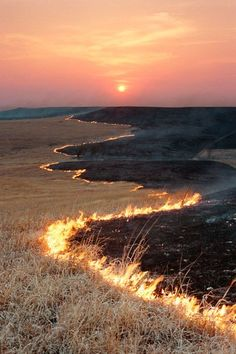 Prairie Fire, Flint Hills, Kansas photo via thehome. Spring is prairie fire season--all the ranchers burn their land to encourage grass to grow. Prairie Fire, Cool Photos, Beautiful Pictures, Flint Hills, Into The Fire, On Fire, All Nature, Album Photo, Photos Of The Week