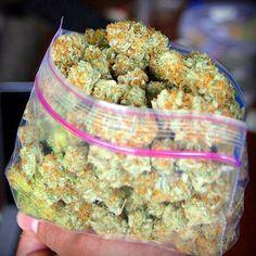 2 oz of Gold Bud l Medical Marijuana Quality Matters- Repined-5280mosli.com -Organic Cannabis College- Top Shelf Marijuana-