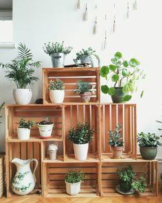 caisse a pomme, jardinière, rangement plantes intérieurs, pots de fleurs, parquet clair, deco murale pompons, caisse en bois deco