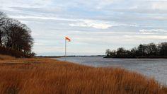 More November (c) photo by sandra goroff sgma@aol.com