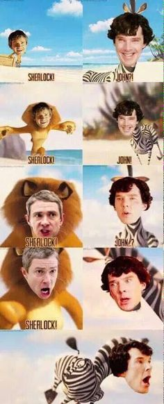 Run Sherlock run! - Genius Meme - Run Sherlock run! The post Run Sherlock run! appeared first on Gag Dad. Sherlock Bbc, Funny Sherlock, Sherlock Fandom, Benedict Cumberbatch Sherlock, Sherlock Quotes, Watson Sherlock, Jim Moriarty, Sherlock Poster, Johnlock