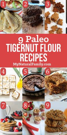 "I need some diversity with my Paleo ""flours"" so I'm excited to try these Paleo tigernut flour recipes. I need some diversity with my Paleo ""flours"" so I'm excited to try these Paleo tigernut flour recipes. Paleo Crockpot Recipes, Nut Recipes, Flour Recipes, Chef Recipes, Chilli Recipes, Kitchen Recipes, Sauce Recipes, Healthy Recipes, Paleo Dessert"
