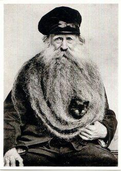 cat beard ∞