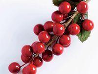 """""""Hedelmiä ja sitrusta"""" Rubiinimarja Juhlan kunniaksi! Hohtavanpunaiset marjat yhdistyvät mausteisiin ja makeisiin ja luovat juhlatunnelmaa"""
