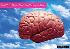 Feed Your Brain Positive Thoughts Daily.