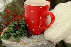 Aiken House & Gardens: Happy New Year! Christmas Lodge, Christmas Mugs, Red Christmas, Christmas Time, Thrift Shop Finds, Going To Rain, New Years Party, Winter Garden, Tis The Season