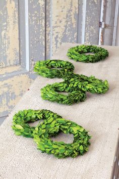 Mini Perserved Boxwood Wreaths (S/6) - Hudson and Vine