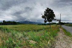 Nature grise #montagne #nature #gris #vent #nuage #vert