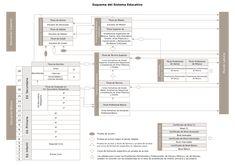 Esquema del Sistema Educativo Floor Plans, Education System, Floor Plan Drawing