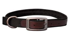 THE SEDONA (DOG0180-2) The Sedona set is designed for rugged dependability and outdoorsy flair with a durable nylon and small leather detailing. The leather reinforced holes help prevent tearing and wear and keep the collar looking top quality. Complete with brushed steel buckles, dee ring and snap. This set is perfect for your outdoor lifestyle. Collar And Leash, Collars, Steel, Lifestyle, Ring, Leather, How To Wear, Top, Outdoor