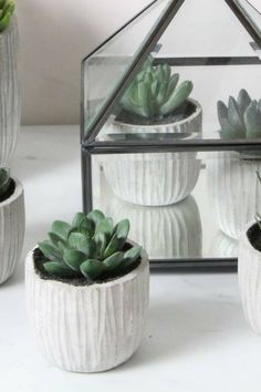 Cute Concrete Pot Set With Fake Succulents. Such An Awesome Way To Decorate  My Home · Artificial Plants And ...