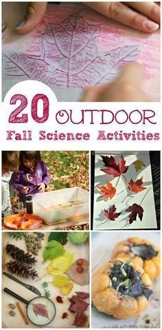 Autumn Activities For Kids, Nature Activities, Stem Activities, Kids Outdoor Activities, Cabin Activities, Hands On Activities, Science Experiments Kids, Science For Kids, Fall Preschool Science