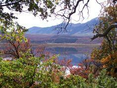 Norte de la #PatagoniaNorte