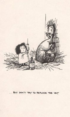 Thelwell ~ ...But dont try to replace the vet