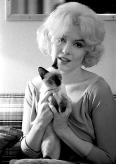 Marilyn Monroe * with Siamese Cat in her dressing room, during the filming of 'Let's Make Love', 1960. photo Robert Vose