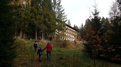 Hotel Stella na Šumavě Cabin, House Styles, Cabins, Cottage, Cubicle