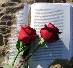Auca del Llibre i la Rosa