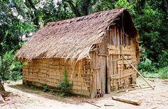 casa guarani na aldeia de sete barras com fechamento de taipa e cobertura vegetal : : tekoa peguaoty