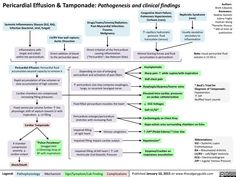 Pericardial effusion and tamponade: Pathogenesis and clinical findings (calgaryguide.ucalgary.ca).