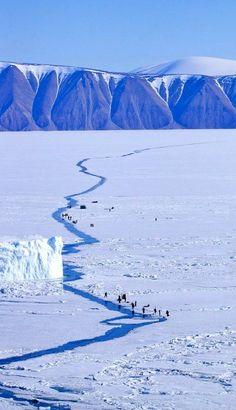 People fishing, Greenland