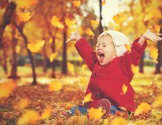 """Képtalálat a következőre: """"őszi képek"""""""