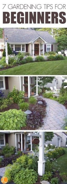 7 Gardening Tips for Beginners, DIY, Home Garden