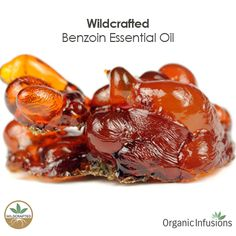 Organic Infusions presents 100% pure, steam distilled, therapeutic grade, Wildcrafted Benzoin Essential Oil (Styrax benzoin).