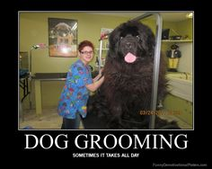 This is a day on the life of me. Large breed dog kennel, large breed dog grooming.