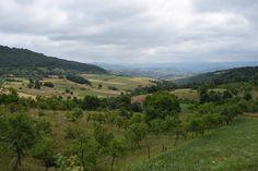 http://lejean-travels.com/judet-caras-severin-et-hunedoara-08072015/