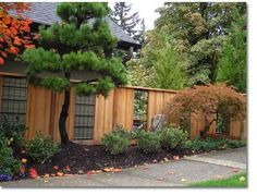 We design and build fences that add beauty and complement your home's architectural style. Transform your yard with a creative fence construction.