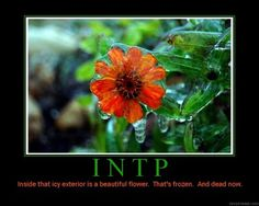 Introverted Intuitive Thinking Perceiving Personality Type MBTI