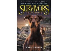 One of our Bestsellers! Survivors: The Ga....  Flying out the door! http://www.pwrplaysonlinepalace.com/products/survivors-the-gathering-darkness-1-a-pack-divided?utm_campaign=social_autopilot&utm_source=pin&utm_medium=pin