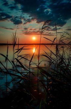 A beautiful sunset Amazing Sunsets, Amazing Nature, Sunset Photography, Landscape Photography, Amazing Photography, Beautiful Places, Beautiful Pictures, Image Nature, Nature Nature