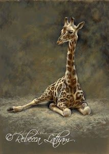 Giraffe Study (commission), 5in x 7in, watercolor on board, ©Rebecca Latham