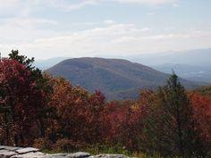 Blue Ridge Mountains, VA  Living Here Now...