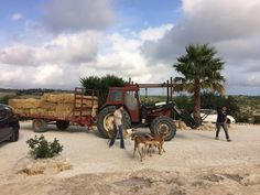 The Local Farmers helping out.