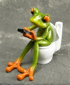 Frankie Frog Texting on Toilet