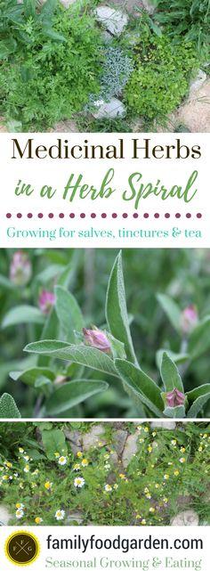 Herbs for the Medicinal Herb Garden