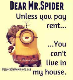 No need to say more! lol