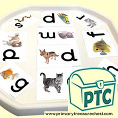 Tuff Tray Phonics Resources - Letter Sound Activities - Primary Treasure Chest Letter Sound Activities, Number Activities, Teaching Activities, Teaching Resources, Teaching Ideas, Play Number, Ourselves Topic, Tuff Tray, Crafts For Kids