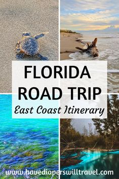 The Ultimate East Coast Florida road trip itinerary including the best places to stop, where to stay, what to do, where to eat, and more!   Florida road trip   Florida road trip itinerary   Family road trip   USA road trip #floridaroadtrip #familyroadtrip #USAroadtrip Road Trip Florida, East Coast Road Trip, Visit Florida, Florida Vacation, Road Trip Usa, Florida Travel, Travel Usa, Road Trip With Kids, Family Road Trips
