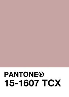 Posts from January 2015 on Mosaic of the Soul Pantone Colour Palettes, Pantone Color, Palette Design, Deco Studio, Mood And Tone, Color Of The Day, Mauve Color, Colour Board, Color Swatches