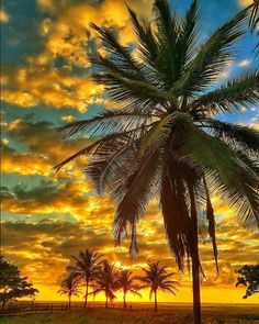 Breathtaking Orange Sunrise at Atalaia Beach, Aracaju, Sergipe, Brazil. Photo by@cbezerraphotos.jpg