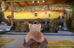 Schießstand Pullman City Harz, Teddy Bear, Animals, Pandas, City, Animales, Animaux, Teddy Bears, Animal
