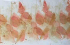 Eco dyed SILK with small leaf Eucalypt