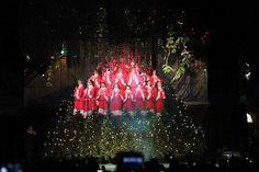 Árvore Cantante – atração gratuita do Natal Luz na Rua Coberta às 20h. Gramado, Rio Grande do Sul, Brasil.