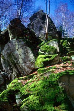 Die Steinwand (825m)