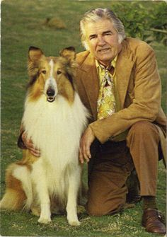 Lassie with trainer Rudd Weatherwax. This is a picture of my husband's great-uncle. He also trained Toto and Old Yeller.